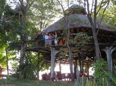 Ranked of 4 Accommodation in Lake Kariba. Add it to your map! All Inclusive, Hotel Reviews, Trip Advisor, Gazebo, Safari, Camping, Outdoor Structures, Campsite, Kiosk