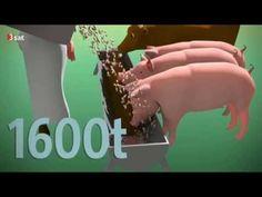 was würde passieren wenn wir 80% weniger fleisch essen würden...