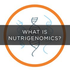 What is nutrigenomics? A quick, easy explanation.