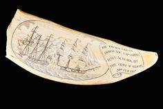 SCRIMSHAW | Genuine Antique Whale Tooth Scrimshaw FOR SALE