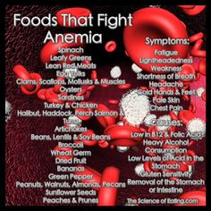 Foods That Fight Anemia... This sight is chock full of information...workouts and diet improvements...