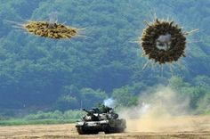 Military photos taken at just the right moment -