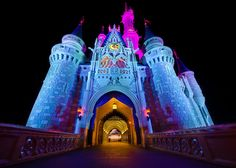 Trying to do Disney on a tight budget? Here are some great money-saving tips!