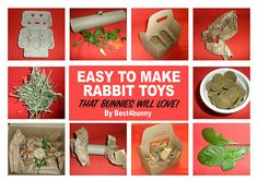 Bunnies love toys, they love treats and they love throwing things about, so why not make these rabbit toys that are very quick, easy & cheap too! toys Easy to make rabbit toys, that your bunnies will love Rabbit Toys, Pet Rabbit, Rabbit Life, Homemade Rabbit Treats, Diy Bunny Toys, Pet Bunny Rabbits, Dwarf Bunnies, Bunny Bunny, Lionhead Rabbit