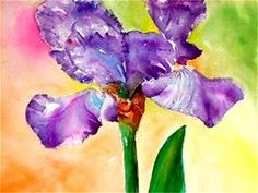 """Iris"" Orginial Watercolor by Sindy Post"