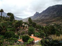 Das Tal der 1000 Palmen, Fataga, Gran Canaria