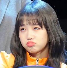 Meme Faces, Funny Faces, South Korean Girls, Korean Girl Groups, Choi Yoojung, Reaction Face, Bae Suzy, Kpop, Facial Expressions