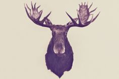 the King of Van Horn Art Print $15.00