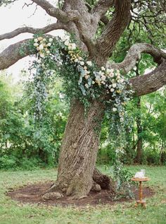 12 Ridiculously Incredible Wedding Altars from the Spring/Summer 2017 Issue Wedding Arbors, Wedding Ceremony Flowers, Tree Wedding, Forest Wedding, Floral Wedding, Wedding Under Trees, Ceremony Backdrop, Ceremony Decorations, Vegas Wedding Venue