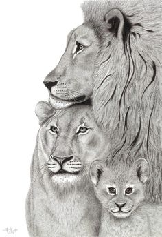 Family Tattoos For Men, Family Tattoo Designs, Lion Couple, Lion Tattoo Sleeves, Lion Family, Lion And Lamb, Leo Tattoos, Lion Painting, Family Drawing