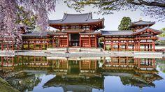 Byodo-In Temple, Japon, étang, réflexion, ressort, cerise Fonds d'écran…