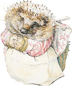 As a child Beatrix had known a charming old Scottish country washerwoman called Kitty MacDonald.    Mrs Tiggy-winkle is a similar small, round twinkly-eyed washerwoman; but has prickles under her cap and does the laundry for some surprising customers, including Peter Rabbit and Squirrel Nutkin!