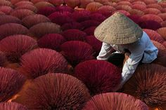 2017 National Geographic Travel Photographer of the Year | National Geographic Field of incense in Viet Nam