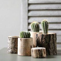 set of five tree trunk pots by st aidan's homeware store   http://notonthehighstreet.com