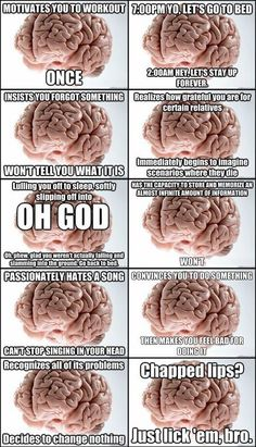 The brain. It has a mind of its own. < hahaha!