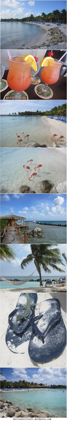 Aruba~ where the water is so clear you can walk out forever!