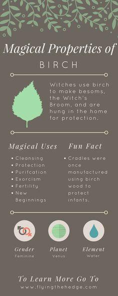 Magical Properties of Birch