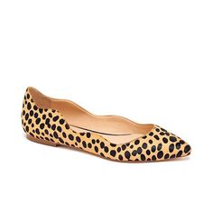 Scallop cheetah flats... ab-solutely.