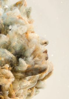 "Alberto Seveso and South African artist Chris Slabber has created a spectacular new series called Destruction/Creation, which features images of gorgeous ""sculptures"" formed from paint swirling in. Photomontage, Creative Photography, Art Photography, Photography Projects, Water Sculpture, Inspiration Artistique, Double Exposure Photography, Ink In Water, South African Artists"