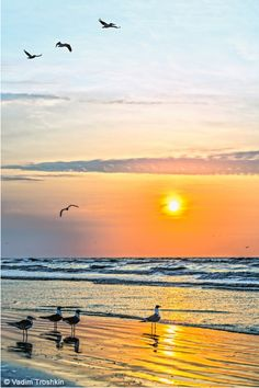 Galveston Island photography by Vadim Troshkin. Various print sizes available for purchase online by clicking image.
