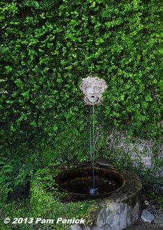Ivied wall and a spitting fountain -- classic. Antique Rose Emporium: Arbors, labyrinth & garden shops | Digging