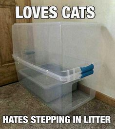 Kitty litter contained, easy solution Cat Litter Pan, Cat Litter Boxes, Litter Box Covers, Pekinese, Cat Care Tips, Pet Tips, Dog Care, Baby Tips, Photo Chat