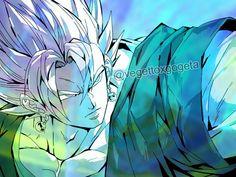 Gogeta And Vegito, Dragon Ball