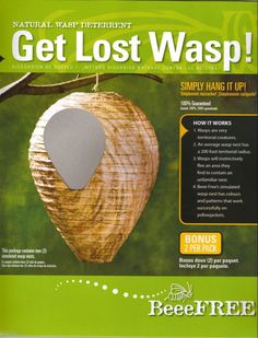 The Bee Free Wasp Deterrent is effective at repelling wasps. Wasps have a natural instinct to avoid the nests of other wasps, and by giving the appearance of a wasp nest, the Bee Free keeps wasps at a safe distance from wherever it is hung. Wasp Deterrent, Get Rid Of Wasps, Wasp Nest, Bee Free, Porch Area, Natural Instinct, Beneficial Insects, Kids Play Area, Garden Pests