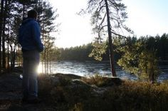 Guided Nature hikes in Nuuksio National Park Transit from Helsinki and snack Scheduled and private trips Walking In Nature, Helsinki, Lakes, Woods, National Parks, Hiking, Summer, Outdoor, Walks