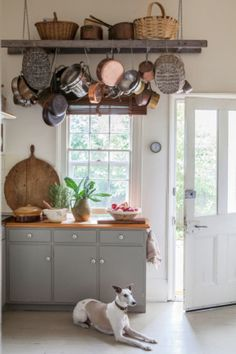 Weathered baskets, copper pots and a cute little whippet. |Photography by Simon Griffths| |Styling by Indianna Foord| homelife.com.au Would like to do this with a ladder but in the laundry for wet days!