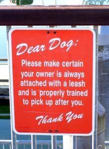 Dear Dog - Dog Quote