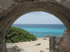 SPC Study Abroad International Photo Contest: Cozumel, Mexico, March 2008 #spcollege