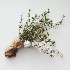 white blooms wrapped in brown paper