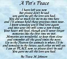 13 Dog Loss Quotes Comforting Words When Losing A Friend 14428 in post at April 2020 pm Pet Loss Quotes, Pet Loss Poems, Funny Pet Quotes, Dog Death Quotes, Rip Quotes, Quotes Images, Random Quotes, Quotable Quotes, Famous Quotes