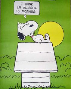 """I think I'm allergic to mornings."" (Snoopy) This was on a poster in my grandmas house when I was a kid. I still think its true :)"