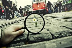 99- Magnifying Glass... VIII by ~salihagir on deviantART