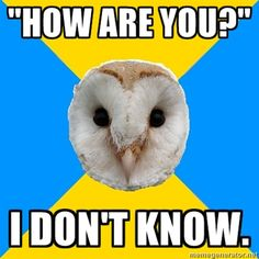 "Bipolar Owl: ""How are you?"" I don't know."