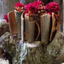 doe-het-zelf-bloemstuk-herfst Texture, Wood, Diy, Crafts, Halloween, Dragon Flies, Hush Hush, Surface Finish, Manualidades