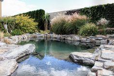 Koupací jezírko | Stavba jezírek Natural Swimming Ponds, Swimming Pools, Backyard, River, Garden, Outdoor Decor, Nature, Ideas, Rock