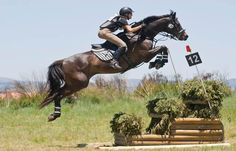 Eventing <3. Stay tuned for the upcoming mystery for teens about a 13-year-old eventing rider. Find out more at www.tanyadavenport.com