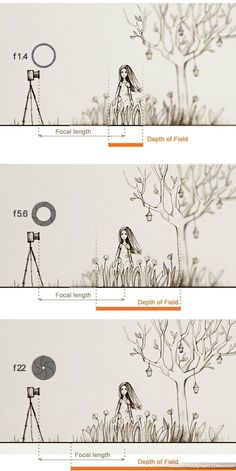 Fabulous tutorial about aperture, ISO and Exposure!