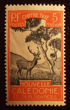 Stamps ©: Stamp of French Pacific Ocean Colony of New Caledonia. Rare Stamps, Old Stamps, Vintage Stamps, Stamp World, Deer Art, Fauna, Mail Art, Stamp Collecting, My Stamp