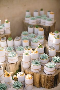 Sugar succulent topped cupcakes | SouthBound Bride | http://www.southboundbride.com/diy-beach-wedding-at-grootvlei-by-ronel-kruger | Credit: Ronel Kruger