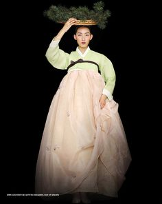 Modern Korean Han Bok (traditional dresses)