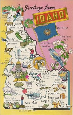 State Map postcard Greetings from Idaho large letter chrome Washington, Boise Idaho, Coeur D'alene, Le Far West, State Map, Vintage Travel, Travel Posters, Wyoming, Travel Usa
