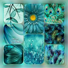46 Super Ideas For Wall Art Collage Colour Collage Art, Collages, Verde Tiffany, Digital Paper Free, Wall Stencil Patterns, Mood Colors, World Of Color, Picture Design, Colorful Pictures