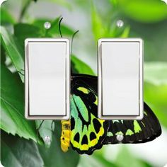 "Rikki KnightTM Richmond Birdwing Neon Green Butterfly Double Rocker Light Switch Plate Cover by Rikki Knight. $15.99. The Richmond Birdwing Neon Green Butterfly single toggle light switch cover is made of commercial vibrant quality masonite Hardboard that is cut into 5"" Square with 1'8"" thick material. The Beautiful Art Photo Reproduction is printed directly into the switch plate and not decoupaged which make these Light Switch Plates suitable for use in any room in the ..."
