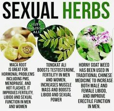 Wellness of Sexual health and wellness, points that females as well as guys must understand and also share issues Health Facts, Health And Nutrition, Health Tips, Health And Wellness, Health Fitness, Health Trends, Women's Health, Natural Health Remedies, Natural Cures
