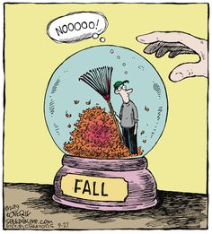 Fall leaves - Speed Bump for Cartoon Jokes, Funny Cartoons, Funny Comics, Funny Jokes, Hilarious, Sarcastic Humor, Speed Bump Comic, Funny Images, Funny Pictures