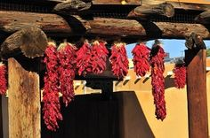 Hanging Ristras in New Mexico